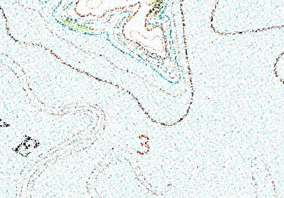 ChartSelect's contour preview for Council Grove LakeMaster Layer