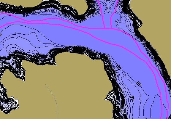 ChartSelect's contour preview for Alan Henry Reservoir LakeMaster HD Contour