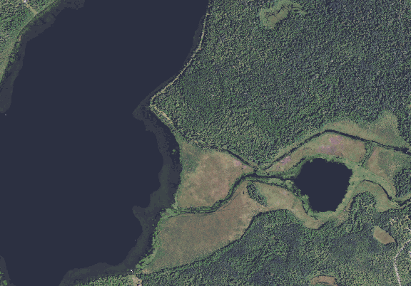 ChartSelect's contour preview for Little Bemidji LakeMaster Layer
