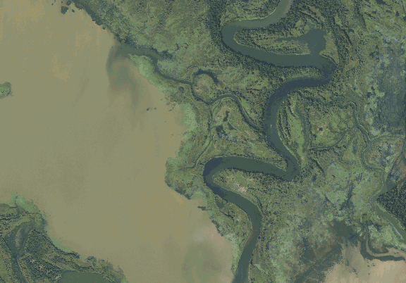 ChartSelect's contour preview for BA Steinhagen LakeMaster Layer